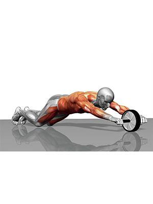 Power Wheel kotač za vježbanje trbušnih mišića MX - Roller